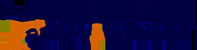 logo-enlloyaviation